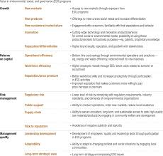 leadership examples for resume valuing social responsibility programs mckinsey company mof32 valuingesg ex1