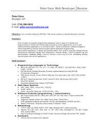 Resume Samples Reddit by Web Developer Resume Summary Resume For Your Job Application