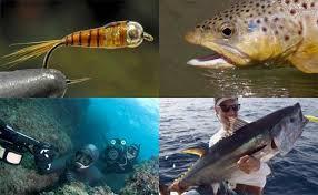 Pesca TV Tv Online