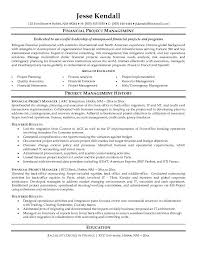Business Analysis Resume  objects developer business sample resume     Sample Project Manager Resume Example   business analysis resume