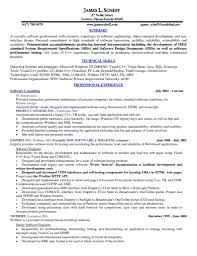 Technical Skills On Cv Resume For Chefs Examples Resume For Your Job Application