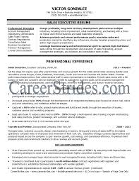 Cover Letter  Sales Executive Resume Template Resume Template     JacobsenAviation     Cover Letter  Sales Executive Sample Resume Template With Account Management And Opportunity Identification Professional Strengths