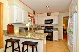 Kitchen Ideas With White Cabinets Kitchen Gallery Of Kitchen Ideas White Cabinets In Painting