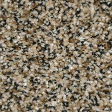 home decorators collection carpet sample grayson color
