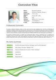 Modern Professional Resume Templates   editable resume template happytom co