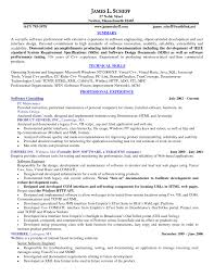Sample Resume Objectives For Web Developer by Resume Technical Summary Free Resume Example And Writing Download