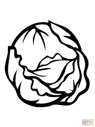 cabbages coloring pages free coloring pages