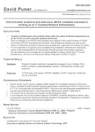 Sample Resumes For Professionals by Top 25 Best Basic Resume Examples Ideas On Pinterest Resume