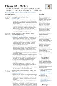 Director Of Client Services Resume Samples   VisualCV Resume