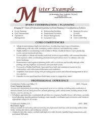 Professional Skills Resume   Resume Examples