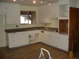 Hickory Kitchen Cabinet Doors New Kitchen Cabinet Doors Awesome In Home Interior Design With New