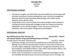 Examples Of Professional Summary For Resume by What Is A Good Example Of A Strong Professional Objective On A