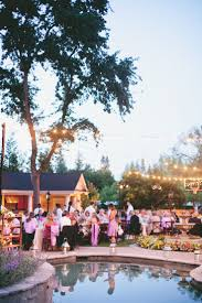 Wedding Backyard Reception Ideas by 35 Best Poolside Wedding Images On Pinterest Marriage Pool