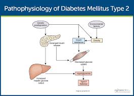 Term paper diabetes possible essay topics for genesis