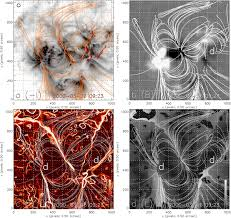 magnetic field topology and the thermal structure of the corona