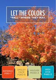 Behr Home Decorators Collection Paint Colors by Let The Beautiful Hues Of Fall Inspire You When Choosing Colors