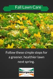 Fall Landscaping Ideas by Best 25 Fall Lawn Care Ideas Only On Pinterest Yard Maintenance