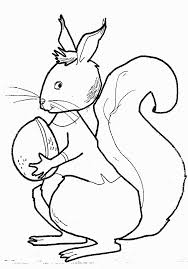 coloring pages squirrels animated images gifs pictures