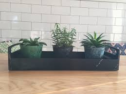 Succulents Pots For Sale by Roundup Succulent Planters And My Thoughts On House Plants