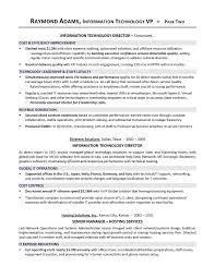 Director Of Operations Resume Sample by Vp Of It Resume It Director Resume Executive Resume Writer For