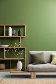 best 25 green painted walls ideas on pinterest green painted