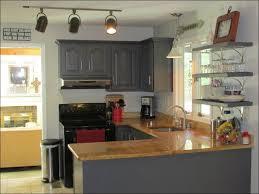 Blind Corner Kitchen Cabinet by Kitchen Lazy Susan Spice Rack Blind Corner Cabinet Solutions Diy