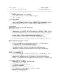 Combination Resume Format Resume Samples Vault Com