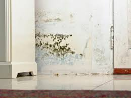 Bedroom Wall Gets Wet What Can I Do About A Gross Mildew Smell In My Bedroom Best