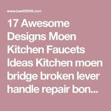 Moen Quinn Kitchen Faucet by Best 10 Moen Kitchen Faucets Ideas On Pinterest Blanco Sinks