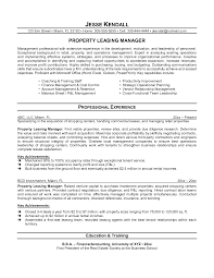 sample consulting resumes   Template   consulting resume example happytom co
