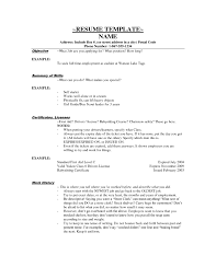 Sample Resume Qualifications List by 100 Original Papers Resume Examples Skills List Job Section On