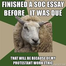 Sociology Student Sheep   finished a soc essay before it was due that will be because Meme Generator
