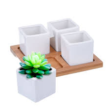 list manufacturers of ceramic cactus planters buy ceramic cactus