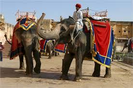 Cab Rental Delhi Agra Jaipur Tour From Delhi, same day jaipur Tour, jaipur tour from delhi, jaipur