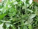 Recipe of the Week: Sweet Potato and ARUGULA Salad with Ginger ...