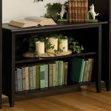 Low Narrow Bookcase by Narrow Low Bookcase Simple And Very Practical Low Bookcase