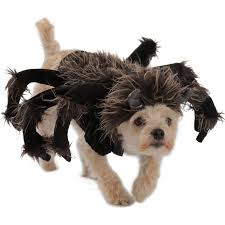 halloween costumes for dogs buycostumes com