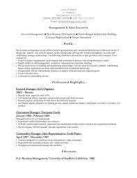 Sales Manager Resume Samples  internal auditor resume sample     happytom co
