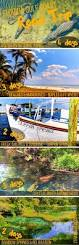 top 25 best manatee florida ideas on pinterest florida florida