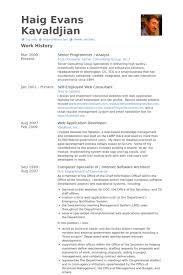 Sample Federal Government Resume by Senior Programmer Resume Samples Visualcv Resume Samples Database