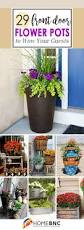 best 25 outdoor flowers ideas on pinterest full sun landscaping
