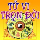Tu Vi 2013 2014 Tron Doi