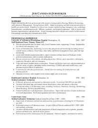 Job Resume Examples 2015 by Premium Essay Writing Company Essay Lounge Resume Sample