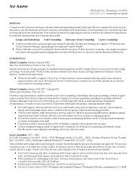 What Is Job Profile In Resume by Career Counselor Resume Example Career Counseling Sample Resumes
