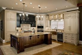 kitchen design l shaped kitchen design modern best juicer