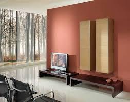 color schemes for home interior magnificent ideas home interior