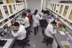 stem cell  stem cell research    Kids Encyclopedia   Children     s     Kids Britannica Photograph Scientists conduct research on stem cells