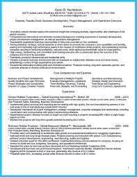 Best Job Resume by Marvelous Things To Write Best Business Development Manager Resume