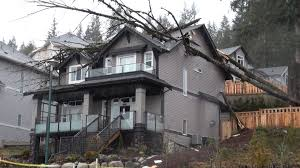 House On Pilings by Coquitlam Water Erosion Responsible For Tree Falling Onto House