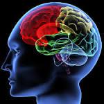 Mental Health - The Measurement Group LLCThe Measurement Group LLC